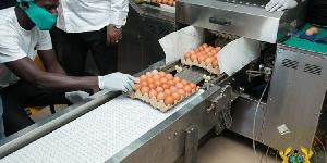 Photo of ID1F: Akufo-Addo inspects Akro Farms